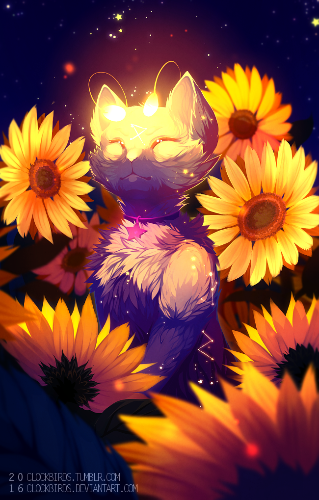 2016 aisha_(neopets) ambiguous_gender antennae cat clockbirds collar constellation detailed_background eyes_closed feline feral fur glowing_antenna mammal neopets night outside portrait sitting solo sunflowers white_fur