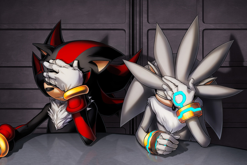 2014 anthro clothing facepalm gloves hedgehog inualet male mammal reaction_image shadow_the_hedgehog silver_the_hedgehog sonic_(series)