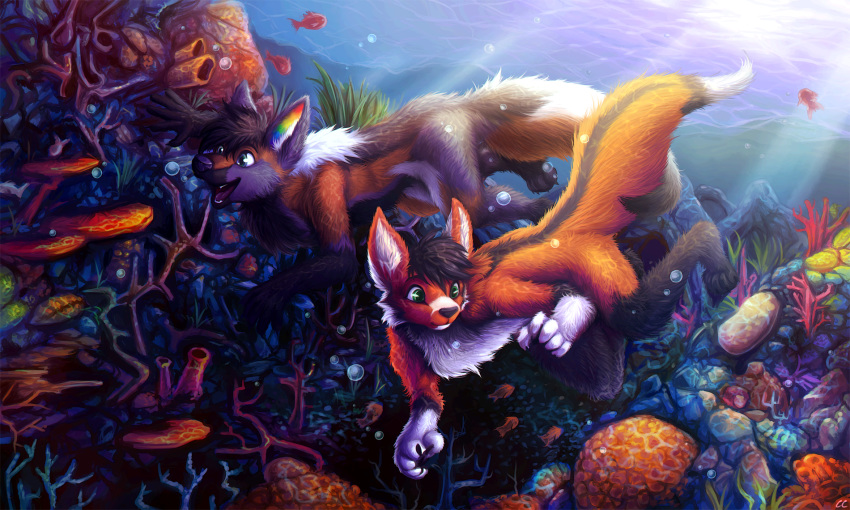 2018 ambient_fish ambiguous_gender anthro bubble canine chibity coral coral_reef cute detailed_background dog duo fluffy fox fray_the_fox fur german_shepherd happy hi_res inner_ear_fluff mammal multicolored_fur nude reef ritter_(krazykit) sea sunlight swimming underwater water