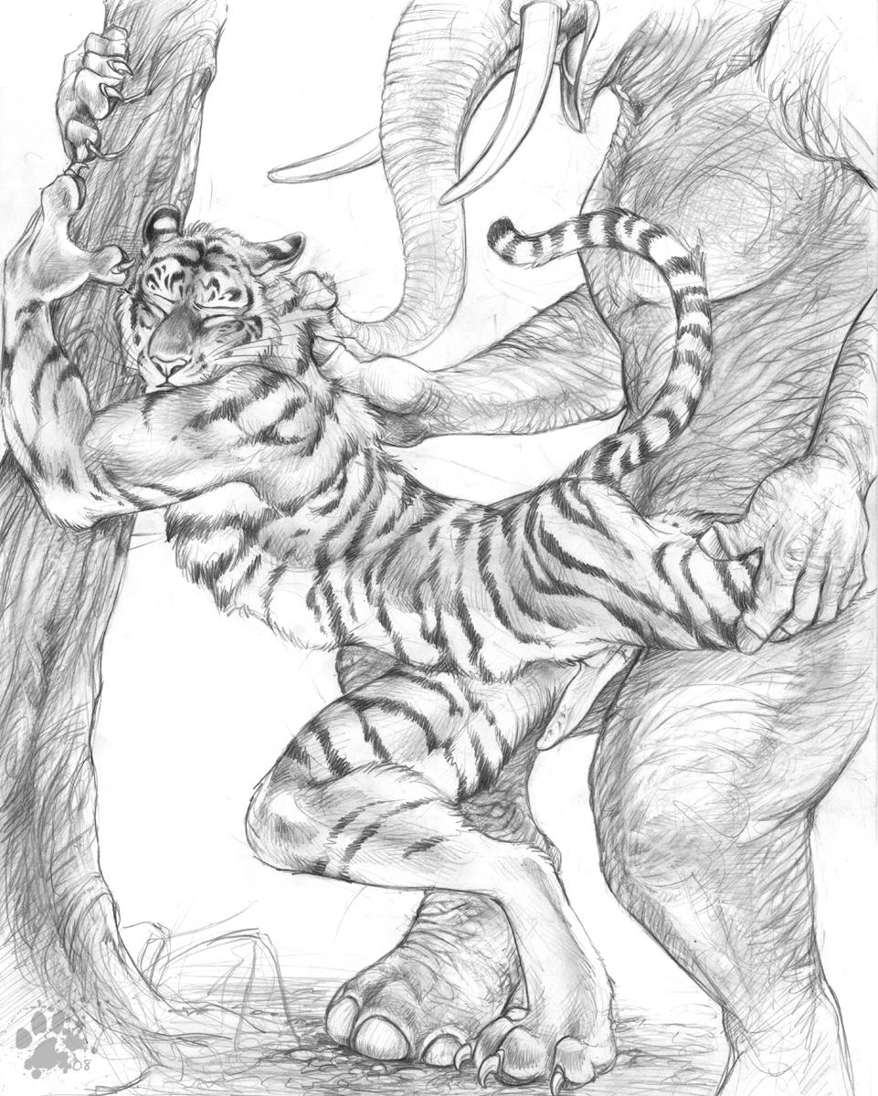 Секс тигра и льва 26 фотография