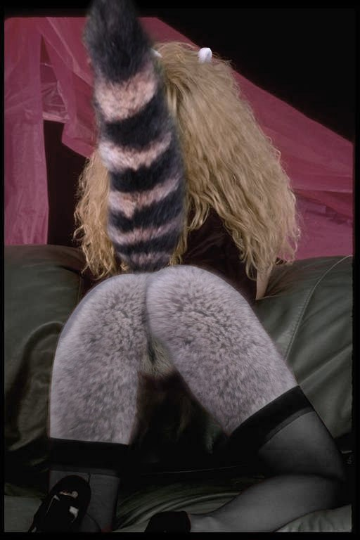 Raccoon fursuit sex video