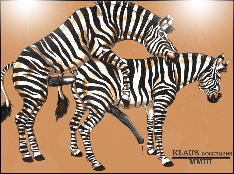 zebra-movie-sex