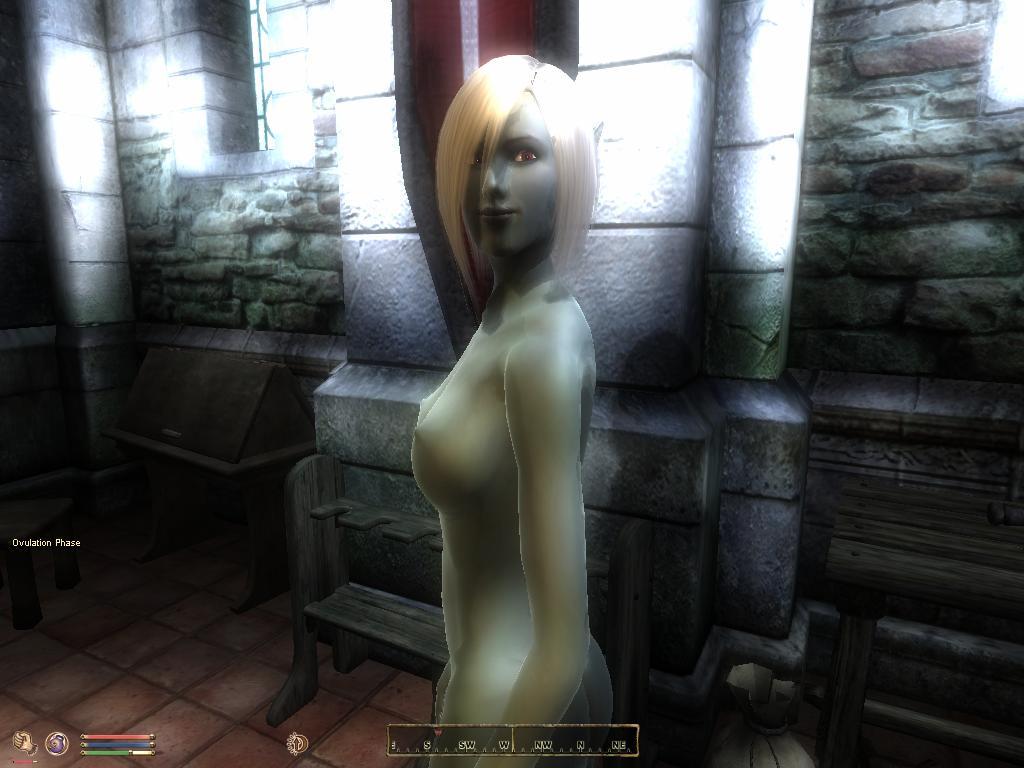 Morrowind порно плагины повезло