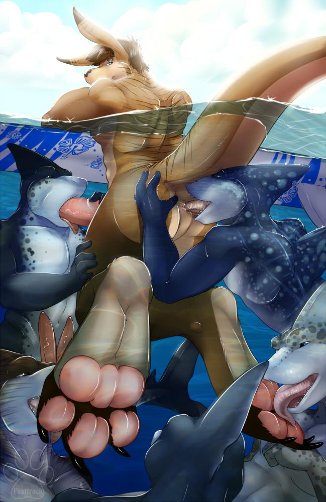 акула фото порно