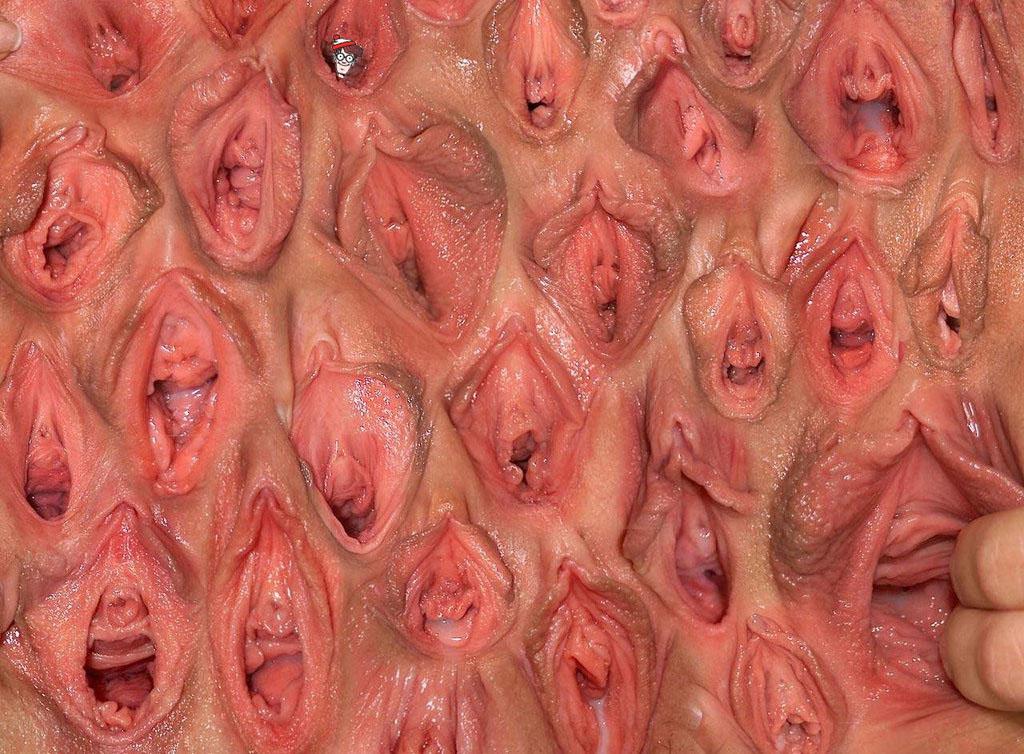 самые красивые вагины мира фото