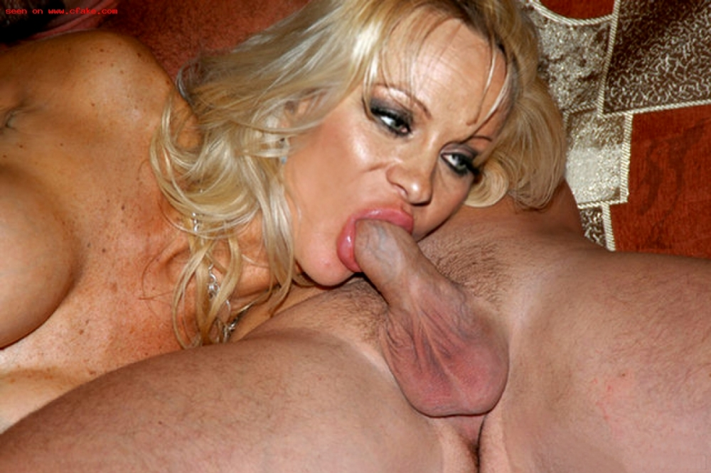 Pamala anderson porno pic can not