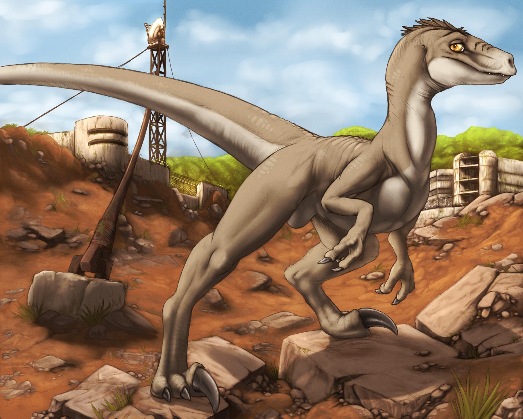 Raptor penis porn images