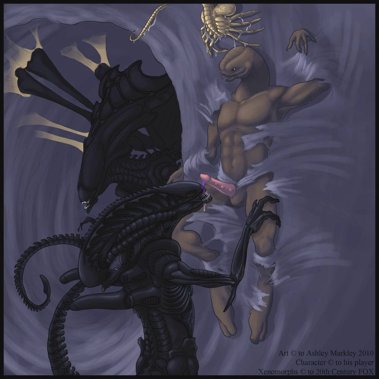 Alien vs predator porn freee