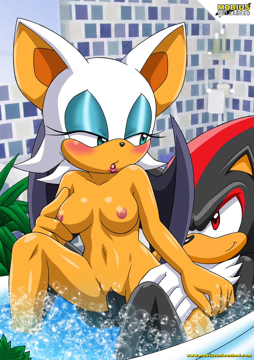 Sonic the hedgehog porn pics rouge xxx nerdy woman
