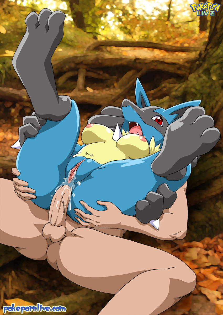 Female pokemon porn videos porn scene
