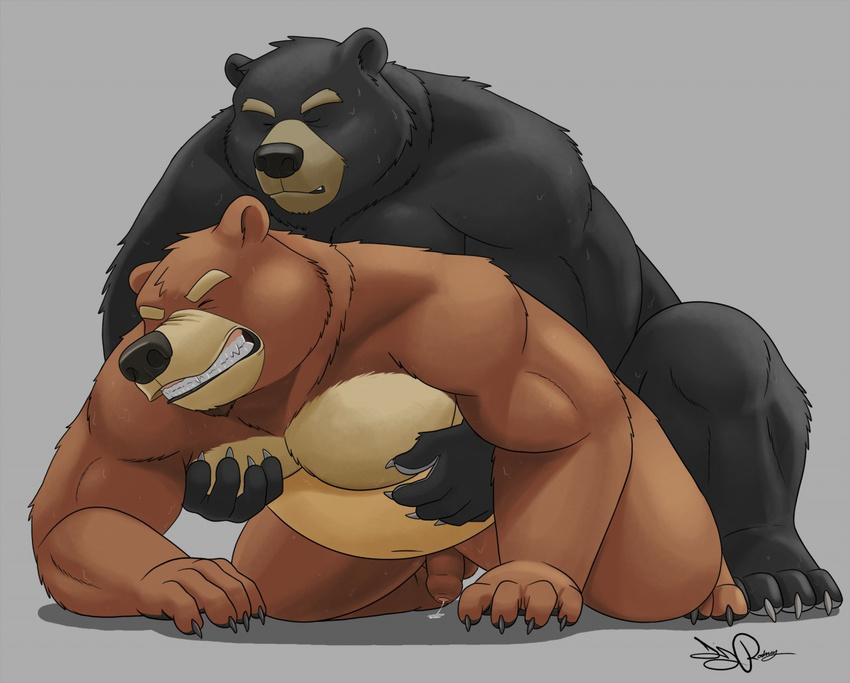 Гей секс фото медведи 62167 фотография