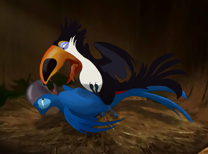 drawnsex-rio-birds