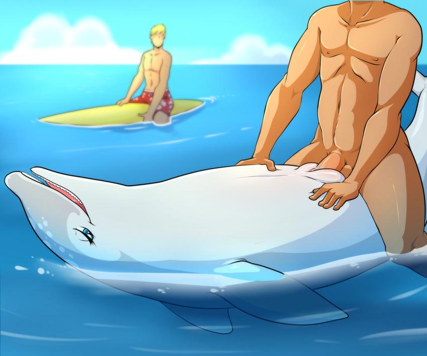 секс с дельфином