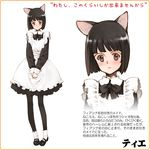 :o animal_ears apron bangs black_hair blunt_bangs blush bob_cut bow bowtie cat_ears character_profile close-up dress embarrassed flat_chest littlewitch littlewitch_romanesque maid maid_apron mary_janes official_art ooyari_ashito open_mouth oyari_ashito pantyhose pink_eyes shoes short_dress short_hair shoujo_mahou_gaku_little_witch_romanesque shoujo_mahou_gaku_littlewitch_romanesque socks solo standing teie_(littlewitch) tillet translation_request wrist_cuffs