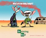 breaking_bad hoodie mammal mouse phosart pinky pinky_and_the_brain rodent the_brain