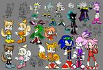 amy_rose anthro blaze_the_cat cream_the_rabbit female imperator_ix jet_the_hawk knockabiller male miles_prower sega silver_the_hedgehog sonic_(series) sonic_riders sonic_the_hedgehog tiara_boobowski