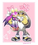 albatross avian bird couple drawloverlala sonic_(series) sonic_riders storm_the_albatross swallow_(bird) wave_the_swallow