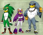 anthro avian bird boots clothing eyewear footwear gloves goggles hawk jeans jet_the_hawk pants ratchetjak sonic_(series) sonic_riders storm_the_albatross swallowing wave_the_swallow
