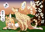 animal_humanoid anthro anthro_on_feral bestiality cat_humanoid feline feral human humanoid kemono_friends mammal mikomo serval_(kemono_friends) sex