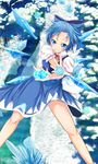 1girl blue_bow blue_dress blue_eyes blue_hair blush bow cirno dress flying foreshortening grin hair_bow hair_slicked_back himura_1129 ice ice_wings incoming_attack kedama looking_at_viewer puffy_short_sleeves puffy_sleeves river short_hair short_sleeves smile snow touhou tree wings