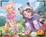 2girls :d animal_ears battery bent_over black_bow black_skirt blonde_hair blue_sky blush bow bowtie breasts brown_eyes camera common_raccoon_(kemono_friends) day dress fang fennec_(kemono_friends) flower fox_ears fox_tail fur_collar gradient_hair grass grey_hair half-closed_eyes hill kemono_friends leaning_forward looking_at_viewer mountain multicolored_hair multiple_girls nature open_mouth panties pantyhose pantyshot pantyshot_(sitting) pepeto_(cocoyuzumugi) pleated_dress raccoon_ears raccoon_tail sandstar short_hair sitting skirt sky smile tail taking_picture thighhighs two-tone_hair underwear white_legwear white_skirt yellow_bow