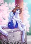 anthro barefoot blue_eyes brown_hair cat clothed clothing detailed_background digitigrade feline female fur hair imanika mammal sitting smile solo white_fur