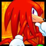 cristianharold0000 hedgehog knuckles_the_echidna male mammal solo sonic_(series) tagme