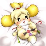anal animal_crossing anus baby blush butt canine cub cute diaper dildo dog female feral isabelle mammal nintendo pussy sex_toy spreading tagme vibrator video_games young