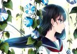 1girl bangs banned_artist black_hair blue_eyes blurry closed_mouth depth_of_field eyebrows_visible_through_hair floating_hair flower from_side kyara36 long_hair morning_glory neckerchief original plant profile red_neckerchief school_uniform serafuku short_sleeves solo tsurime upper_body vines