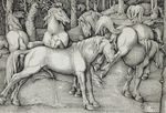 1534 ancient_furry_art animal_genitalia animal_penis anus balls butt cum cumshot ejaculation equine equine_penis female feral flared_penis forest grass greyscale group half-erect hans_baldung_grien hi_res hooves horse kick male male/female mammal masturbation monochrome nude on_hind_legs open_mouth orgasm outside penis proper_art public_domain raised_tail rejection renaissance signature standing teeth traditional_media_(artwork) tree underhoof woodcut