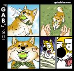 5_fingers anthro ball bandanna black_eyes black_nose canine cheek_tuft clothed clothing comic countershade_face countershade_tail countershade_torso countershading disembodied_hand dog dream eyebrows feral fully_clothed fur gab_shiba gabshiba grass mammal multicolored_fur shiba_inu shirt solo solo_focus sweat t-shirt tennis_ball tuft two_tone_fur two_tone_tail waking_up white_countershading white_fur white_tail white_topwear yellow_fur yellow_tail