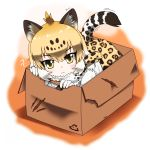 1girl ?? absurdres animal_ears animal_print bangs black_hair box cardboard_box chibi closed_mouth expressionless extra_ears eyebrows_visible_through_hair eyes_visible_through_hair full_body fur_scarf hair_between_eyes head_tilt highres hoyeechun in_box in_container jaguar_(kemono_friends) jaguar_ears jaguar_print jaguar_tail kemono_friends light_brown_hair looking_at_viewer medium_hair multicolored_hair print_neckwear print_skirt scarf shirt sidelocks skirt solo tail tsurime white_hair white_shirt yellow_eyes