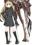 1girl alternate_costume animal bangs black_dress black_footwear black_gloves blonde_hair blue_eyes boots brown_hair buttons closed_mouth cross-laced_footwear dress eyebrows eyebrows_visible_through_hair facing_viewer full_body giraffe gloves gradient_hair hair_between_eyes hand_on_hip high_ponytail hirayama_(hirayamaniwa) kemono_friends lace-up_boots legs_apart long_hair long_sleeves looking_at_viewer multicolored_hair no_animal_ears no_horn no_tail reticulated_giraffe_(kemono_friends) short_dress simple_background solo standing tareme turtleneck white_background white_hair
