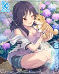 1girl aki_makoto bag breasts card_(medium) cleavage cygames dog face_licking highres licking official_art one_eye_closed plastic_bag princess_connect! puppy purple_hair rain rainbow shorts squatting umbrella