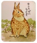 2015 fusion giraffe japanese_text lagomorph mammal outside rabbit text translation_request tree 井口病院
