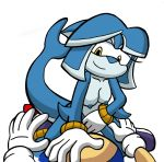 anthro cetacean cowgirl_position dolphin female first_person_view male male/female mammal marine on_top sex sonic_(series) sonic_the_hedgehog tempest_the_dolphin winningstick