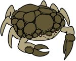 2017 6_legs alternate_species ambiguous_gender arthropod brown_exoskeleton bugdex crab crustacean digital_drawing_(artwork) digital_media_(artwork) dot_eyes exoskeleton fakémon feral front_view full-length_portrait golem_(pokémon) marine mineral_fauna multi_leg multi_limb nintendo pincers pokémon pokémon_(species) portrait red_eyes ricky_hoffman rock simple_background solo standing tan_exoskeleton toony two_tone_exoskeleton video_games white_background