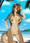 2018 5_fingers anthro bikini black_lips black_nose breasts brown_eyes brown_fur brown_hair canine clothing day detailed_background digital_media_(artwork) dog female fur hair lycangel mammal midriff navel outside sky smile solo swimsuit