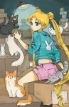 1girl animal_print aqua_jacket bangs bishoujo_senshi_sailor_moon black_cat blonde_hair blue_eyes box box_stack brown_cat bunny_print bunny_symbol cardboard_box cat closed_mouth commentary crescent cropped_jacket double_bun english_commentary from_behind grey_cat indoors jacket lamp light long_hair long_sleeves looking_at_viewer looking_back luna_(sailor_moon) midriff multiple_cats orange_cat pink_shorts shorts sitting sleeves_pushed_up solo sooyun_choi stretch tsukino_usagi twintails very_long_hair white_cat