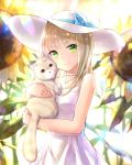 1girl alphatitus animal bangs blonde_hair blue_bow blue_ribbon blunt_bangs bow cat choker day dress eyebrows_visible_through_hair flower green_eyes hat hat_bow hat_ribbon holding holding_animal long_hair looking_at_viewer original outdoors ribbon ribbon_choker shiny shiny_hair sleeveless sleeveless_dress smile solo sun_hat sundress sunflower sunlight upper_body white_dress white_hat white_ribbon