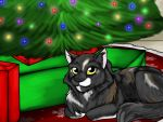 2011 amocin cat christmas christmas_tree digital_media_(artwork) feline feral gift holidays lights looking_at_viewer mammal smile solo tree
