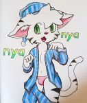 anthro bulge clothing cub cute feline fur invalid_tag kemono male mammal nyan panties solo tiger underwear white_tiger wunderhase young