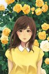 1girl closed_mouth collared_shirt commentary_request eyebrows_visible_through_hair flower green_eyes highres leaf looking_at_viewer munakata_(hisahige) peter_pan_collar rose shirt short_sleeves solo yellow_flower yellow_rose yellow_shirt