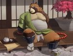 anthro balls barely_visible_genitalia belly big_balls big_belly canine clothing detailed_background fundoshi gigasaddle gyobu japanese_clothing jewelry male mammal necklace nipples overweight overweight_male robe scar slightly_chubby solo tanuki tattoo tenting thick_thighs tokyo_afterschool_summoners underwear