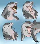 blue_eyes brown_hair cetacean digestion dolphin duo eyes_closed feral fin flippin-rad gaping_mouth grin gurgle hair human male male_pred male_prey mammal marine mouth_shot open_mouth sequence sigh simple_background size_difference smile spots swallowing teeth text throat tongue vore