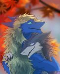 2018 4_fingers anthro anthro_on_anthro autumn biped blonde_hair blonde_mane blue_eyes blue_fur blurred_background cheek_tuft claws countershading detailed digital_drawing_(artwork) digital_media_(artwork) duo fur grey_fur hair happy hug julian_(fluffserg) kel leaves looking_at_partner looking_down looking_up male male/male mammal mane nature neck_tuft nude outside pawpads paws romantic sergal shaded sidgi signature slit_pupils smaller_version_at_source smile snout tan_fur three-quarter_view tree tuft vilous_universe