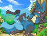 2018 absurd_res ambiguous_gender cloud duo eyes_closed hi_res lucario luxury_ball lying nintendo outside pokéball pokémon pokémon_(species) riolu sky spread_legs spreading tricksta video_games