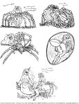 anus arachnid arthropod drider female female/female friendship_is_magic grotesque incest muscular my_little_pony princess_celestia_(mlp) princess_luna_(mlp) pussy rarity_(mlp) sketch smudge_proof spider transformation