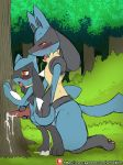 ahegao anal anal_penetration animal_genitalia animal_penis anthro anthro_on_anthro black_fur blue_fur blush canine canine_penis cub cum cum_in_ass cum_inside cumshot duo ejaculation evolutionary_family forest fur handjob kneeling level_difference looking_pleasured lucario male male/male mammal nintendo orgasm outside penetration penis pokémon pokémon_(species) red_eyes riolu sex sheath size_difference sketch standing tongue tongue_out tree video_games winick-lim yellow_fur young