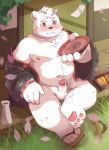 2018 anthro balls belly blush clothing detailed_background dwzaafi erection footwear fur hi_res humanoid_hands humanoid_penis male mammal moobs navel nipples overweight overweight_male penis polar_bear robe sandals sitting solo ursid ursine white_fur